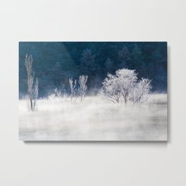 Iced Mists Metal Print