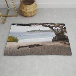 Beach with Cypress Tree Rug