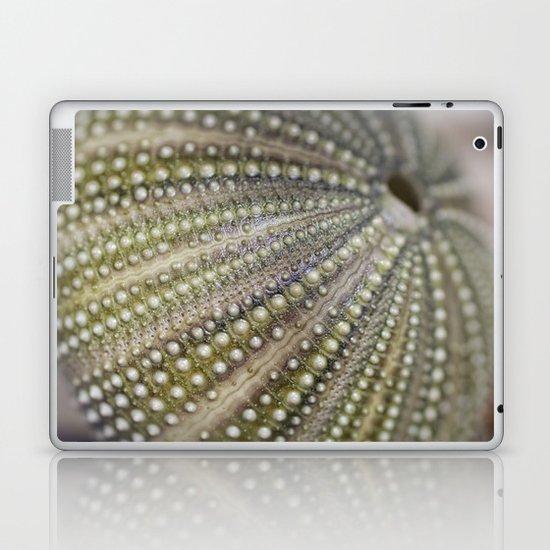 Urchin Texture Laptop & iPad Skin