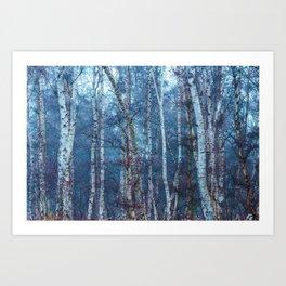 Dense Birch Art Print
