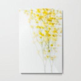 Mimosa - JUSTART (c) Metal Print