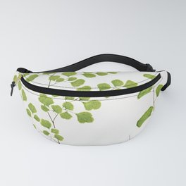 Adiantum Assimile and A Lunulatum from Ferns British and Exotic (1856-1860) by Edward Joseph Lowe Fanny Pack