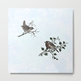 Winter king and Robin companions Metal Print