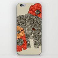 peacock iPhone & iPod Skins featuring The Elephant by Valentina Harper