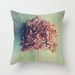 Autumnal Light no.2 Throw Pillow
