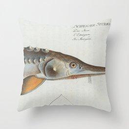 Vintage Illustration of a Sturgeon Fish (1785) Throw Pillow