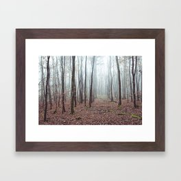 Misty Forest Framed Art Print