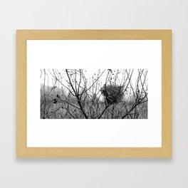 Winter Bird Nest Framed Art Print