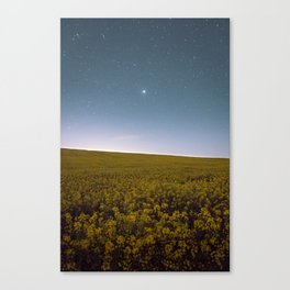Fields of Yellow, Stars and Blue Canvas Print