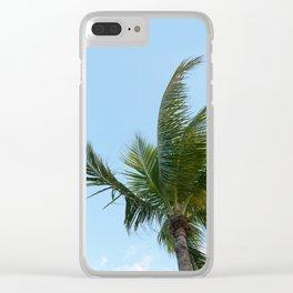 KEYWEST PALM TREE Clear iPhone Case