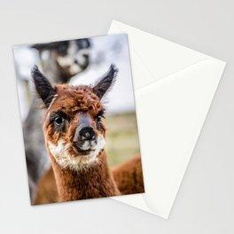 Moonlight Alpaca Kendal Stationery Cards