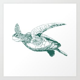 Kemp's Ridley Sea Turtle Art Print