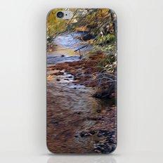 Mill River iPhone & iPod Skin