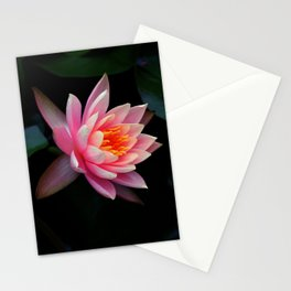 Birth of Beauty Stationery Cards