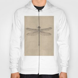 Dragonfly Fossil Dos Hoody