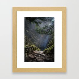 Trail to The Falls Framed Art Print