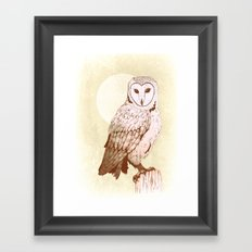 Barn Owl recolour Framed Art Print