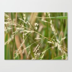 Simple Canvas Print