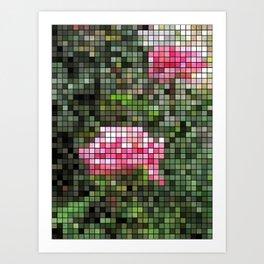Pink Roses in Anzures 5  Mosaic Art Print