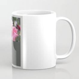Pink Roses in Anzures 6 Blank Q6F0 Coffee Mug