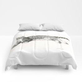 Grey Cat Comforters