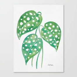 Leaves with Stains Canvas Print