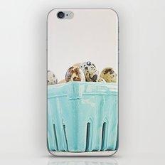 Mi cesta turquesa. iPhone & iPod Skin