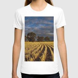 Golden Harvest T-shirt