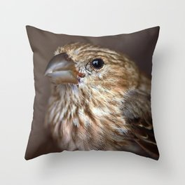 Portrait of a House Finch Throw Pillow