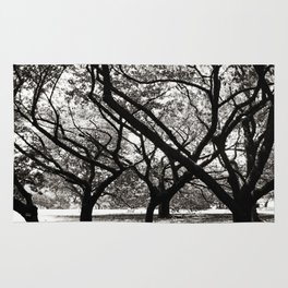 Trees of Harajuku Rug