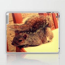 Casual Squirrel  Laptop & iPad Skin