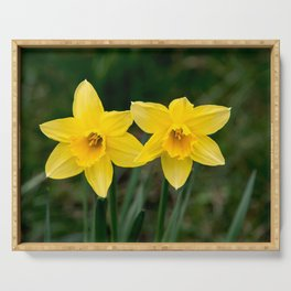 Two daffodils in spring Serving Tray