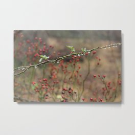 Winter Raindrops  Metal Print