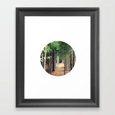 Wonderwoods Framed Art Print