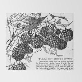 "'Hansell"" Raspberries 1886 Throw Blanket"