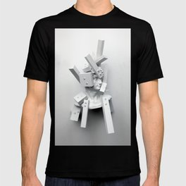 From The Perspective of Accumulation T-shirt