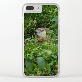 Groggy Groundhog Clear iPhone Case