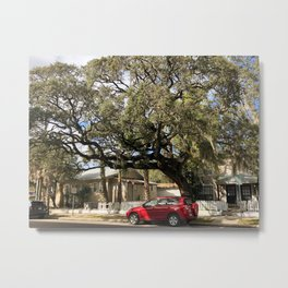 Parked car in front of tree Metal Print