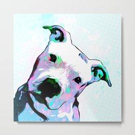 Pit bull - Puzzled - Pop Art Metal Print