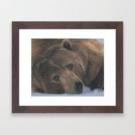 Ursus Major Framed Art Print