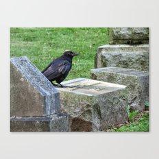 Cemetery Raven  Canvas Print
