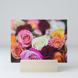 Colorful Roses Mini Art Print