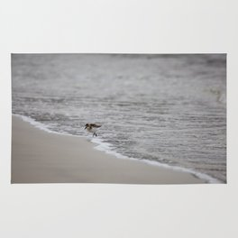 Lonely Sandpiper Rug