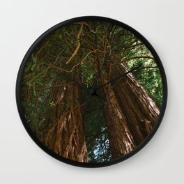 Redwood Forest VIII Wall Clock
