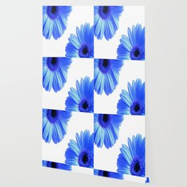 The blue daisies Wallpaper