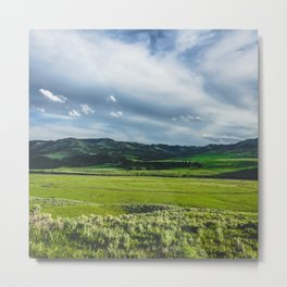 Lamar Valley, Yellowstone National Park Metal Print