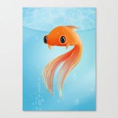 Little Fish Coy Koi Canvas Print