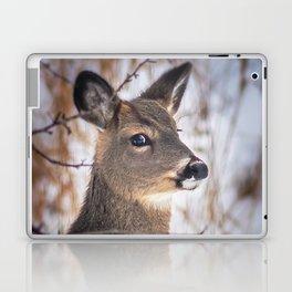 January Whitetail Laptop & iPad Skin