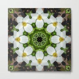 Canada anemone mandala 1 Metal Print