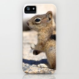 Watercolor Golden-Mantled Ground Squirrel 02, Dunraven Trail, Colorado, To The Beat of My Own Drum iPhone Case